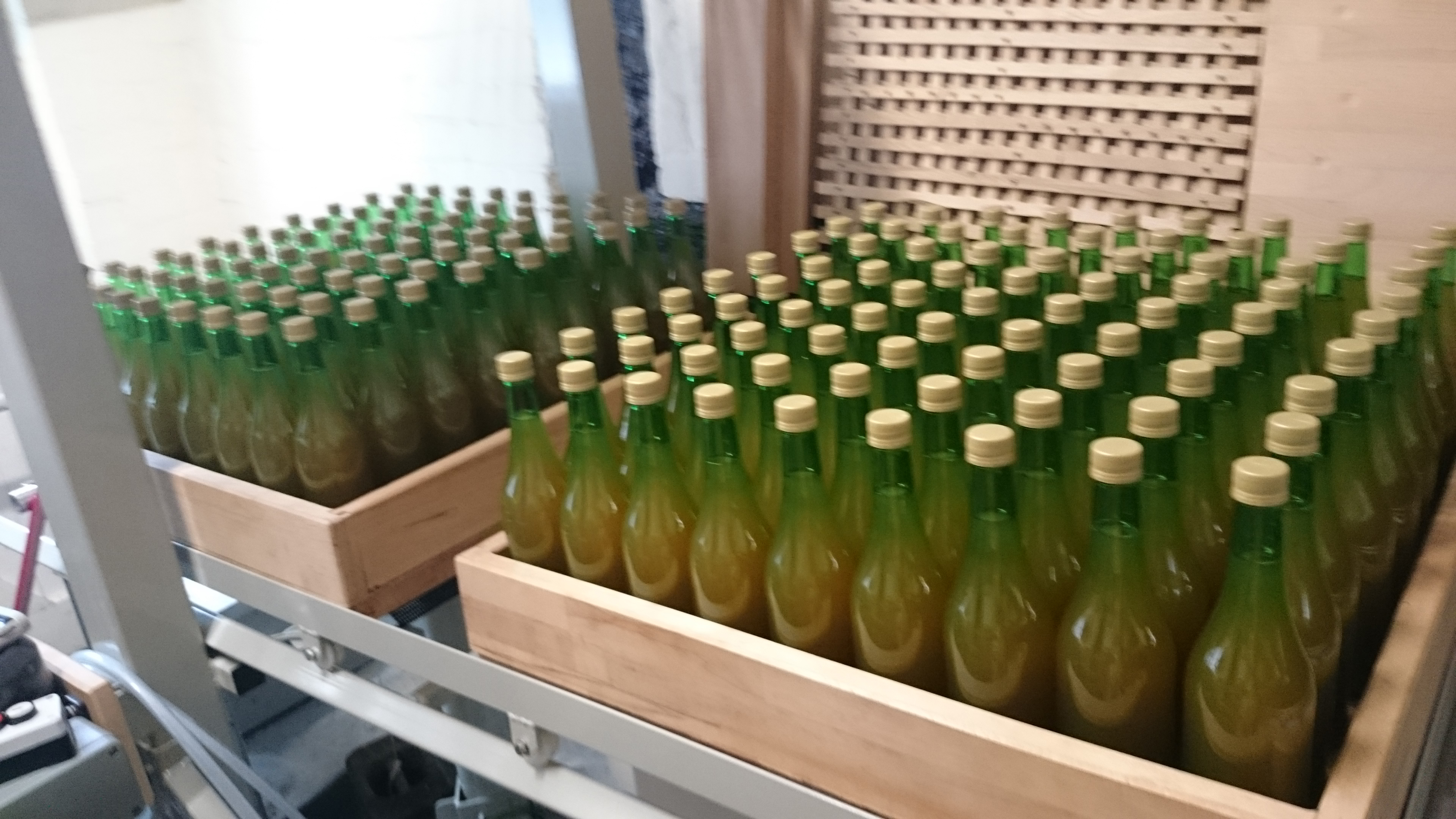 Trays of apple juice ready for pastuerising